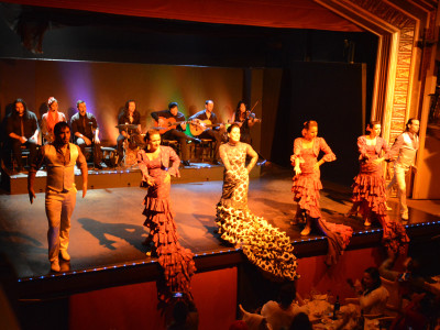 Flamenco Dinner + Show