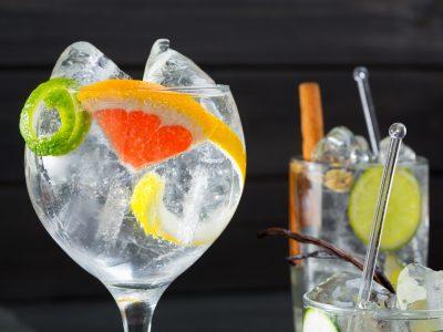 Dégustation de Gin & Tonic !