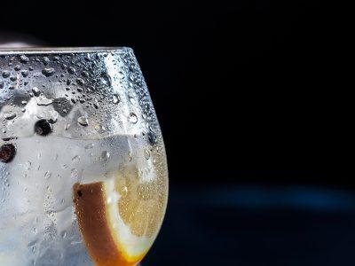Gin & Tonic Tasting!